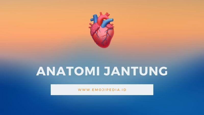 Arti Emoji Anatomi Jantung by Emojipedia.ID