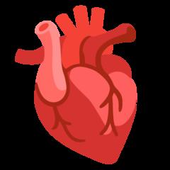 Emoji Anatomi Jantung Google
