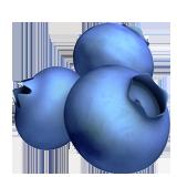 Emoji Bluberi Apple